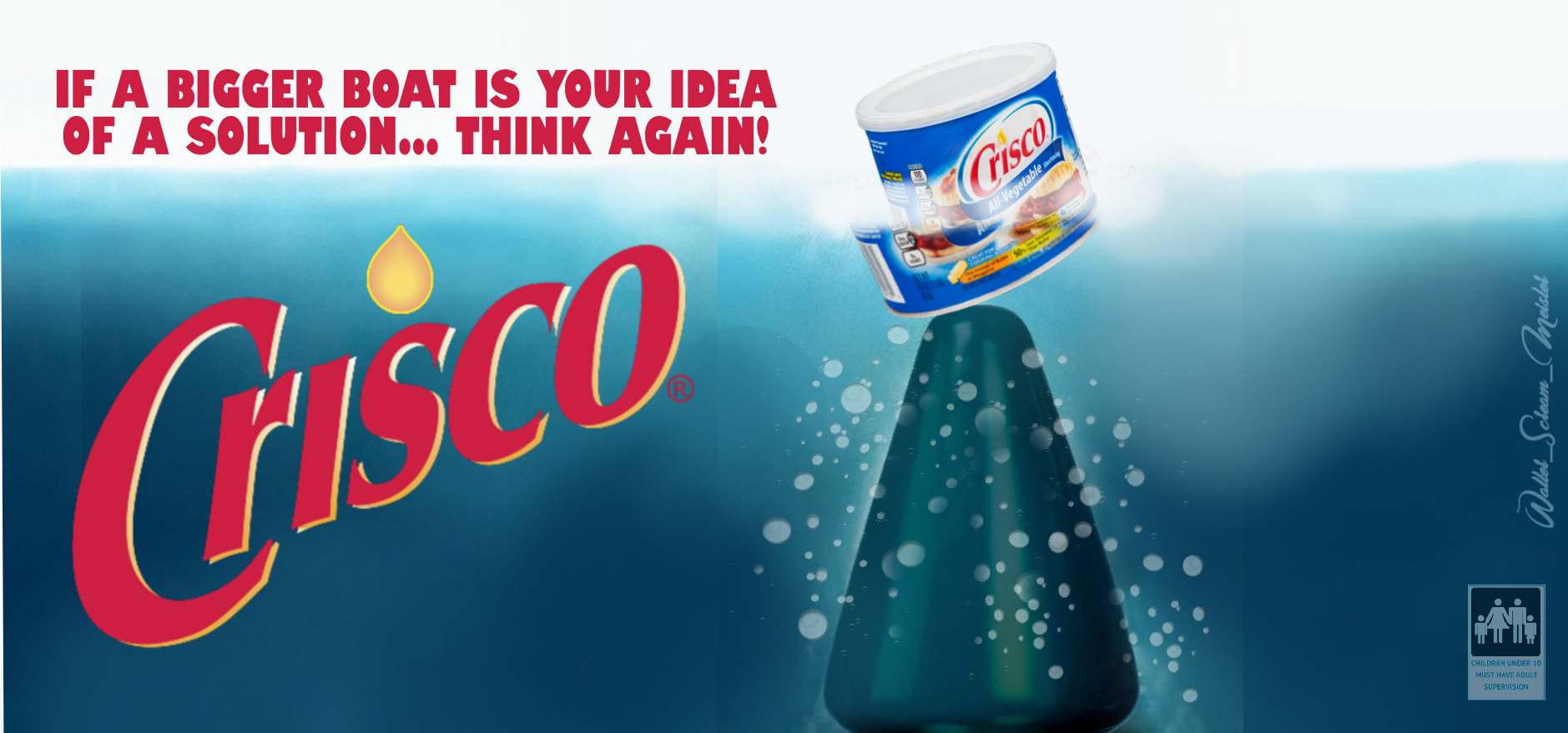 anal solution CRISCO final